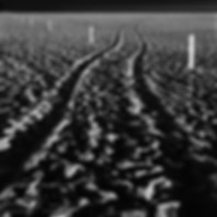 "This mysterious nighttime photograph of receding tire tracks on a footstep laden beach, criscrossed with white posts welcomes you into Chip Forelli's intriquing ""Hint of Man"" landscape collection."