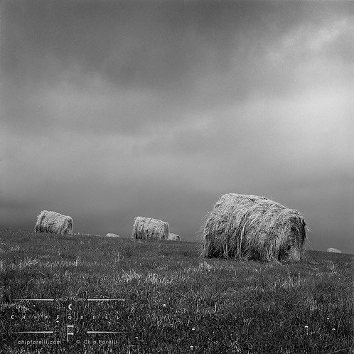 Round hay bales in a field with a threatening, stormy sky in black and white.