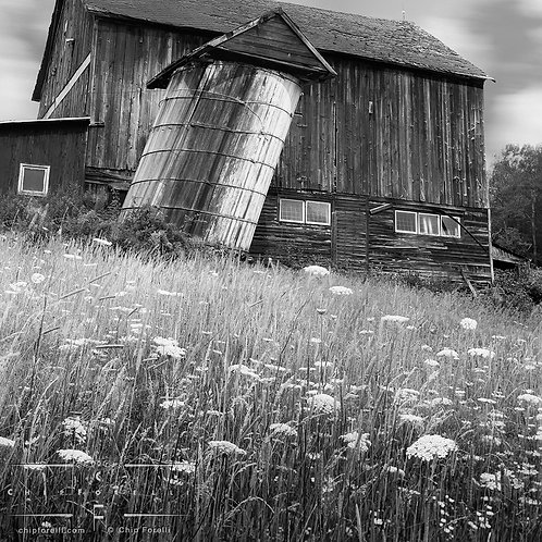 A low angle view of a barn with a tilted silo with flowers dominating the foreground.