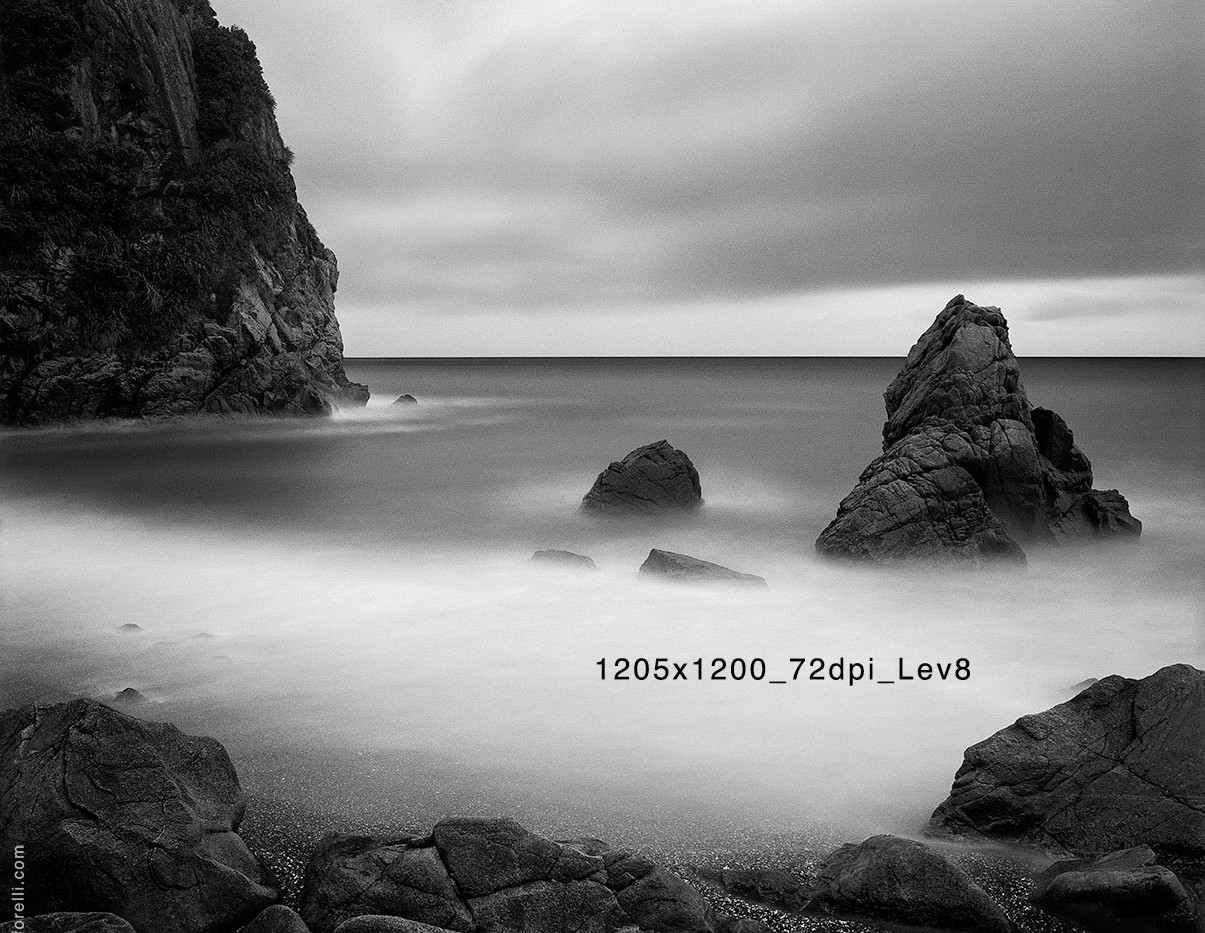1205x1200_72dpi_Lev8.jpg