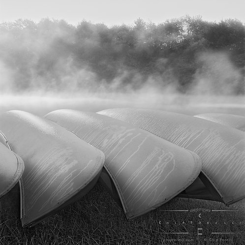 Upside down metal canoes, dripping with condensation next to a fog shrouded lake with misty trees in the background in B & W.