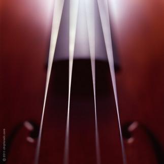 Viola Strings copy.jpg