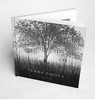 A rising morning sun glows behing a country tree on the cover of Terra Emota, black & white photography book by Chip Forelli.