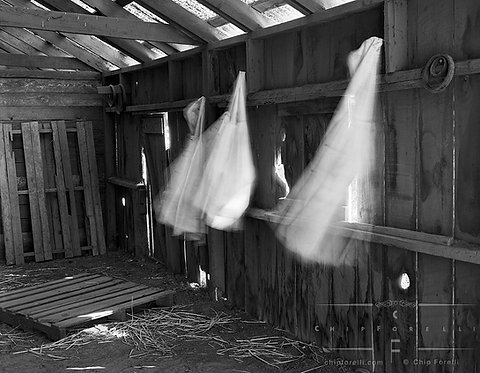 Moving rainslickers hanging in a barn with sunlight streaming through cracks and holes in the roof in black and white.
