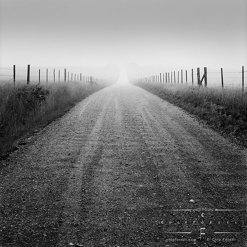 Low angle view of fence lined country road in perspective with fog and trees in the distance in B&W.