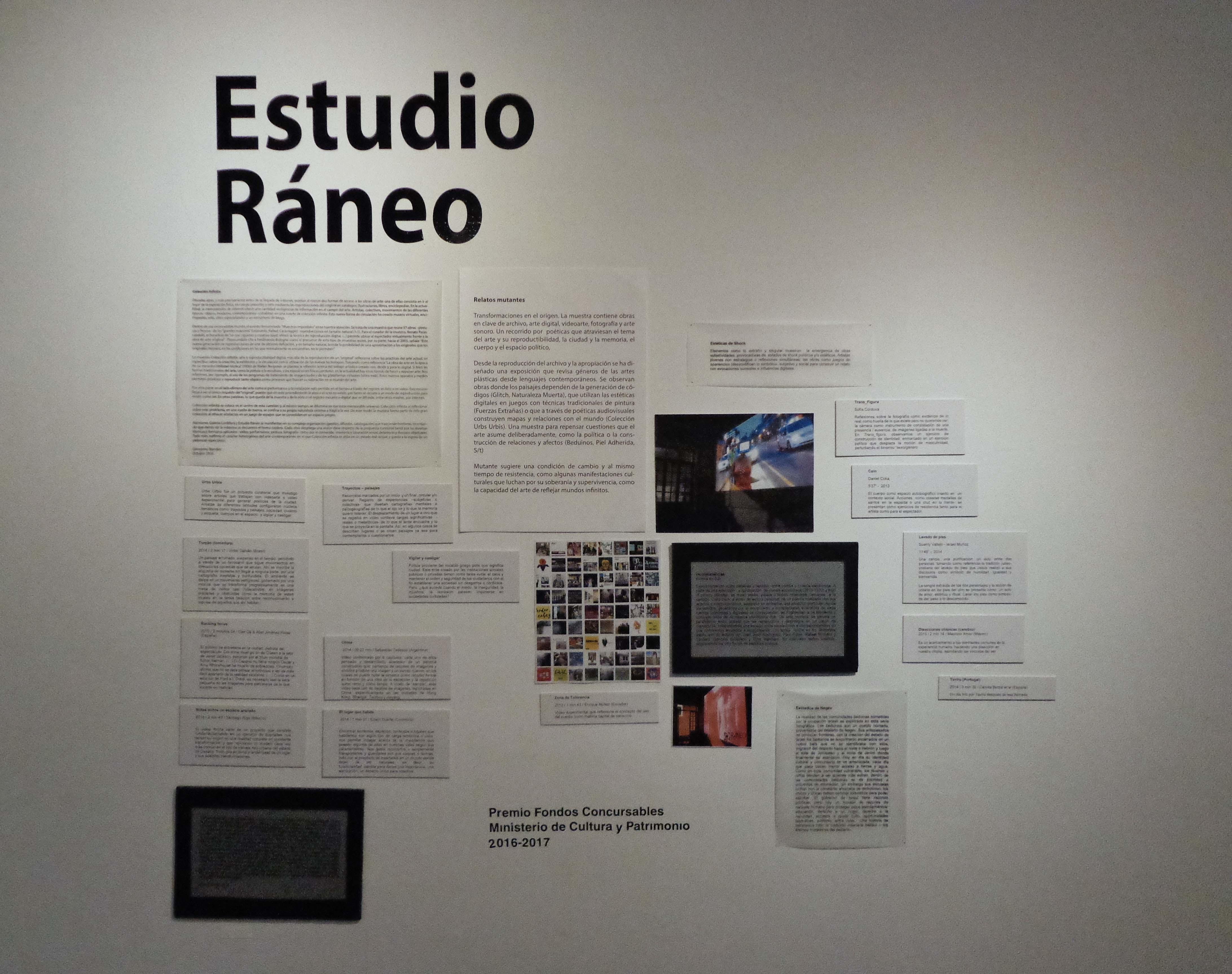 Textos curatoriales