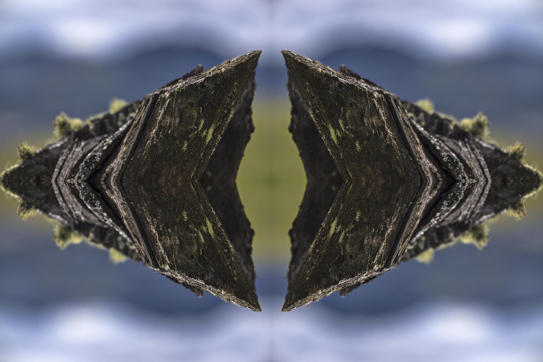 08 morfologia del universo