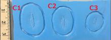 Cut C1- C3 $10 each.jpg