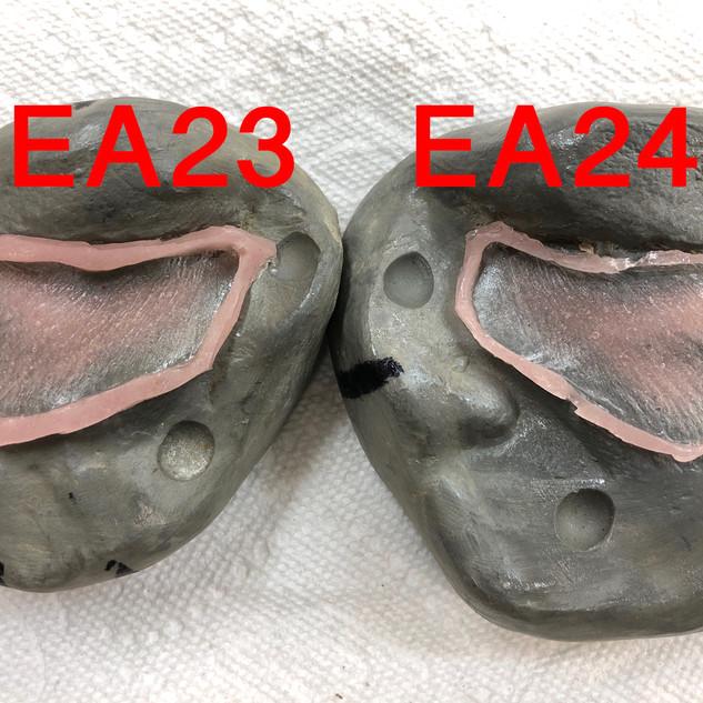 EA23 & 24