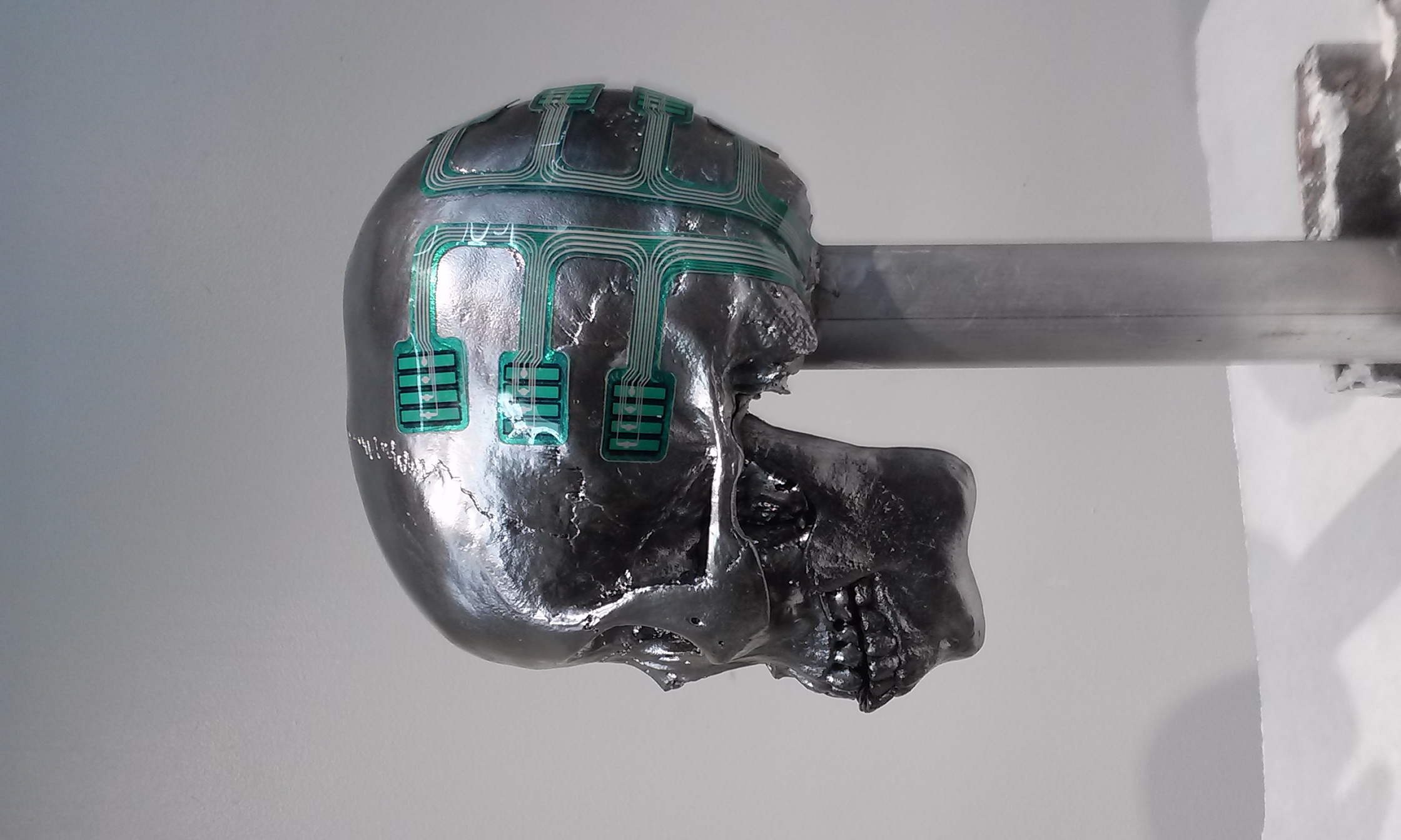 CSI metalic skull