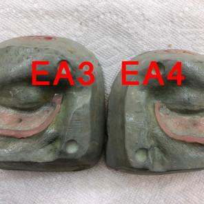 EA3 & 4
