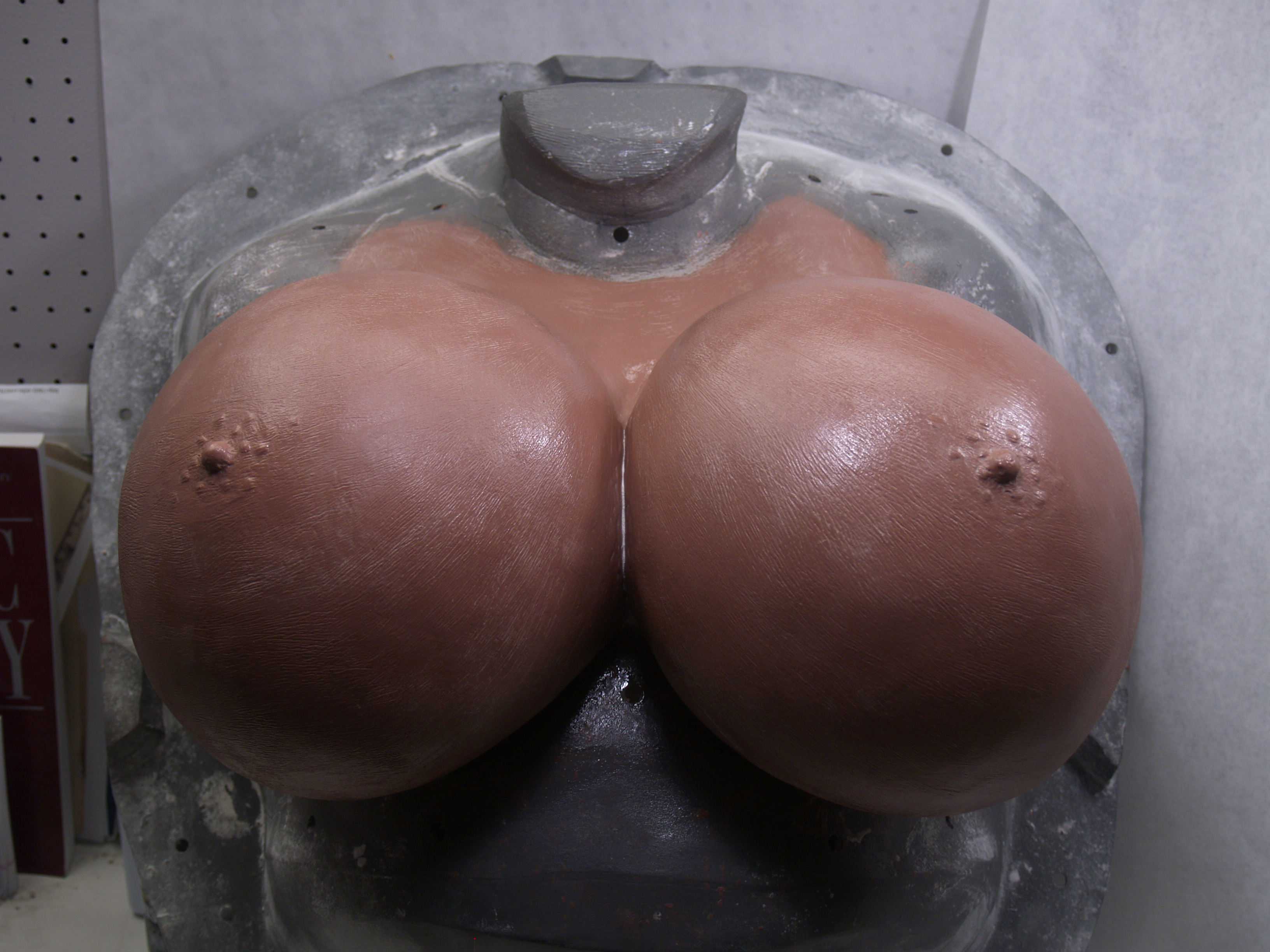plastic surgery breasts