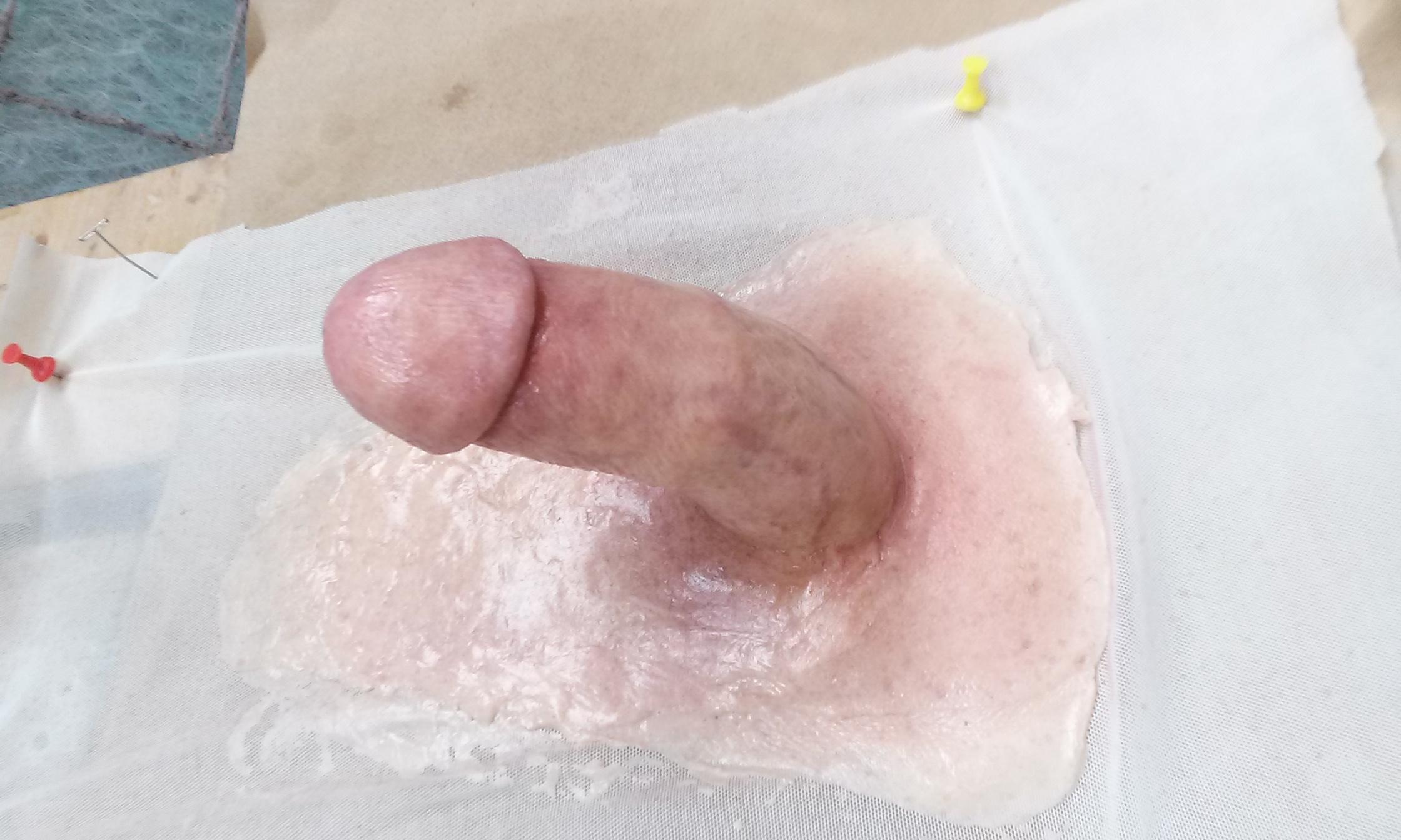 fake penis