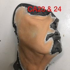 CA23 & 24