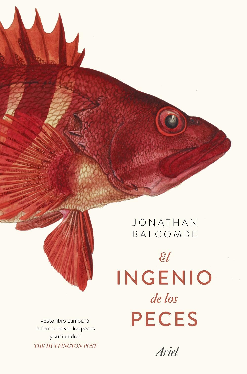 INGENIO PECES
