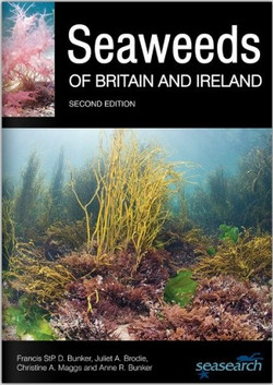 Seaweeds Seasearch cover-500x500