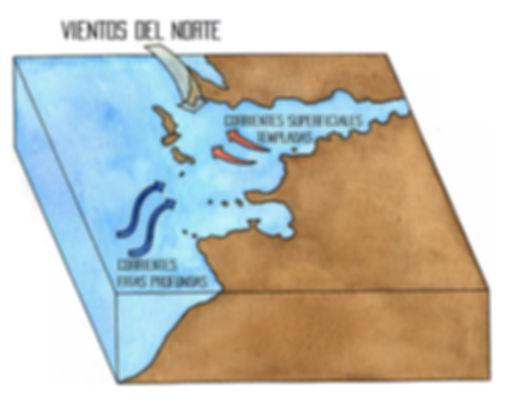 afloramiento costero Ría de Vigo
