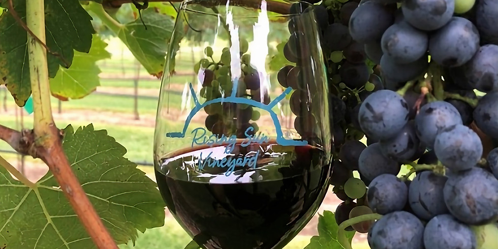 Rising Sun Vineyard Event