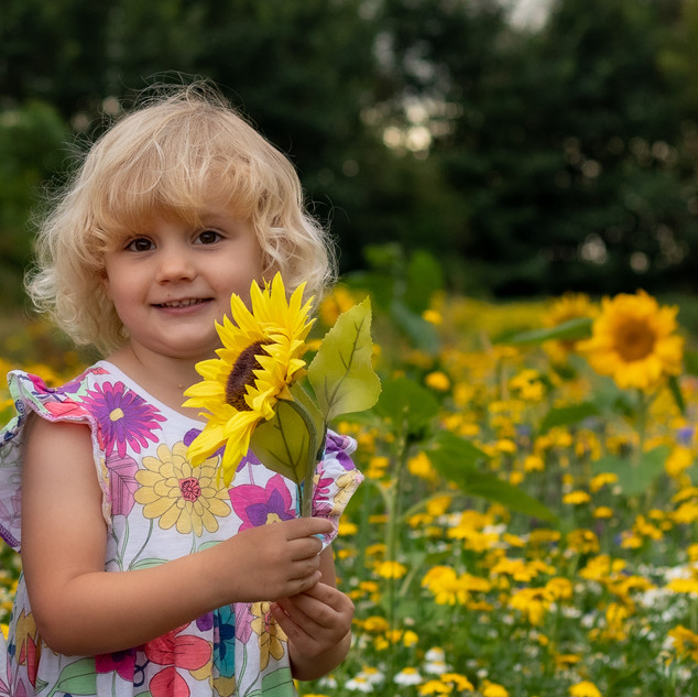 Sunflower |Princess