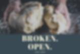 Broken Open Lent Image.png
