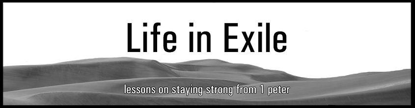 Life in Exile Banner.jpg
