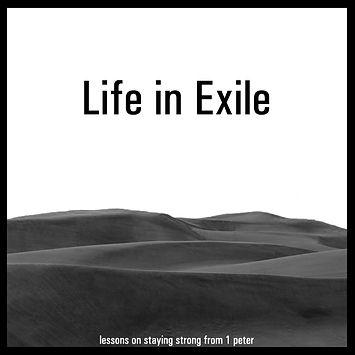 Life in Exile V7.jpg