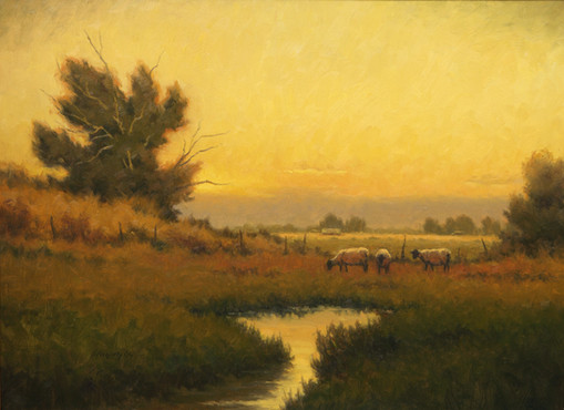 Sheep at Dusk by Steve McGinty