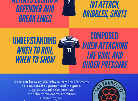 Positional Profiles - Player Review