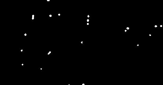 Signature no backgound.tif