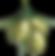 料理研究家 オリーブオイルソムリエ 石井秀代 公式オンライン