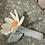 Thumbnail: Hochet Fleur ☆ LITTLE DUTCH
