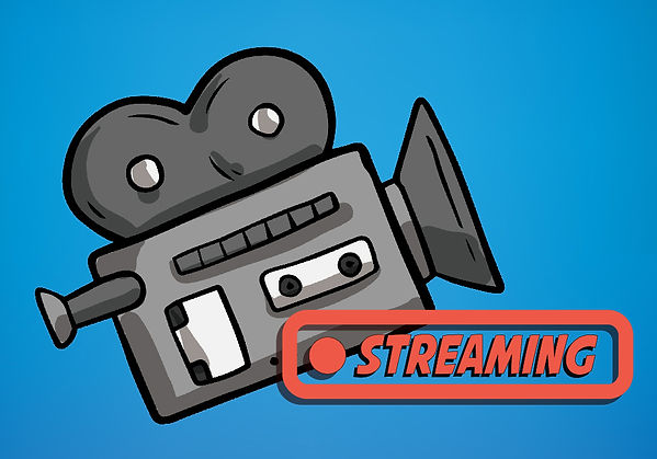Video Cam stream pic-01.jpg