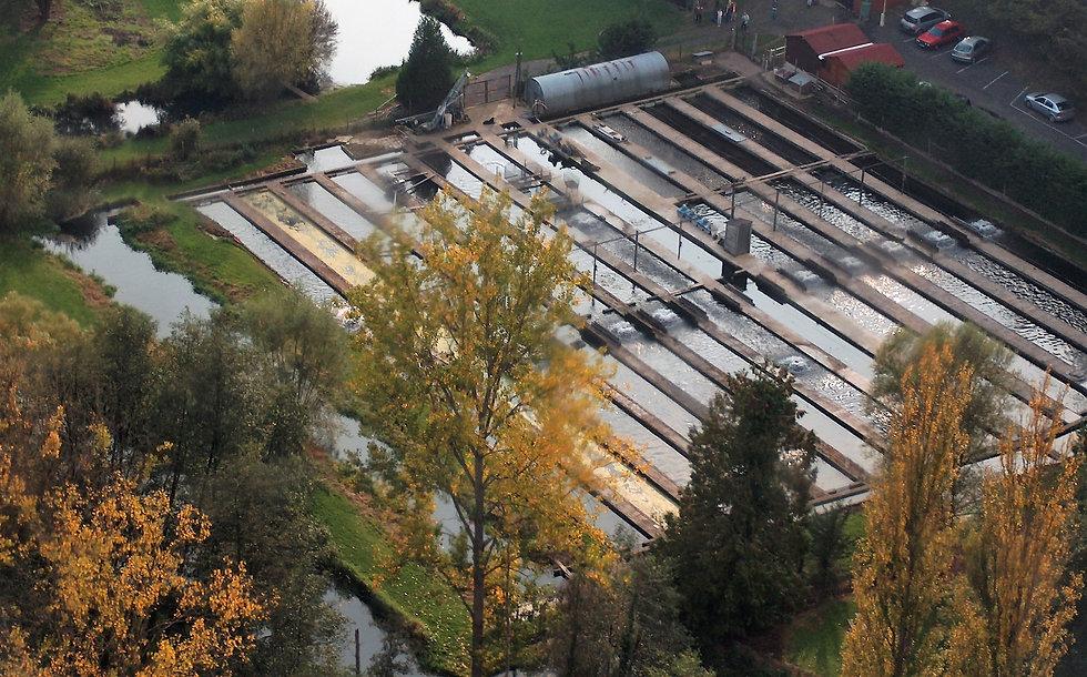 pisciculture de l'Eclimont