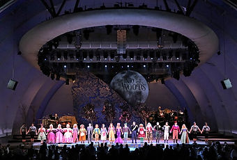 Into the woods -Hollywood Bowl 1.jpg