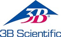 3B-logo+company_STACK for web.jpg
