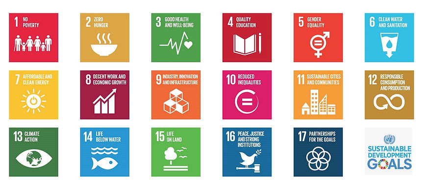 Sustainability-Development-Goals.jpg