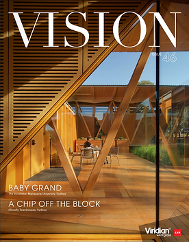 Vision issue 46.png