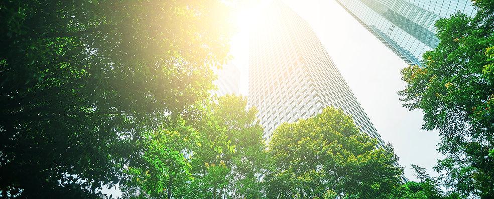environment_sustainability_ready.jpg
