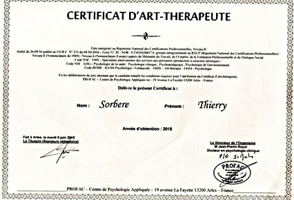 certificat art-therapie_edited_edited_ed
