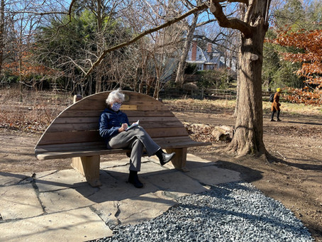 Meditations in Nature - Journal Bench in Stony Run