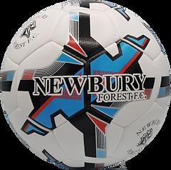 Newbury_Forest_F.C_edited.png