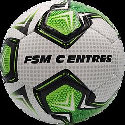 FSM_Centres_Mission_Hybrid-removebg-prev