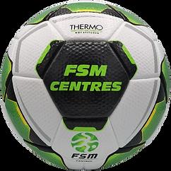 FSM_Centres_Thermo_Resposta-removebg-pre