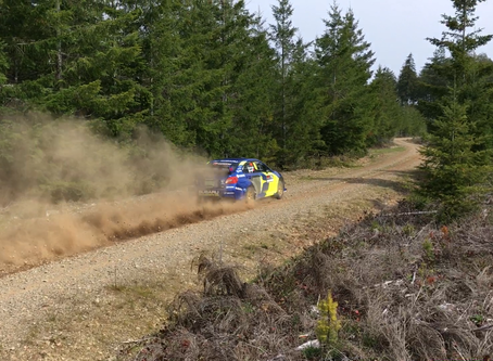 DirtFish Olympus Rally: First Loop Report