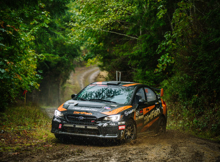 DirtFish Olympus Rally: Extended Preview
