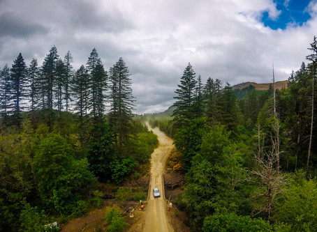 DirtFish Olympus Rally: Recce Report