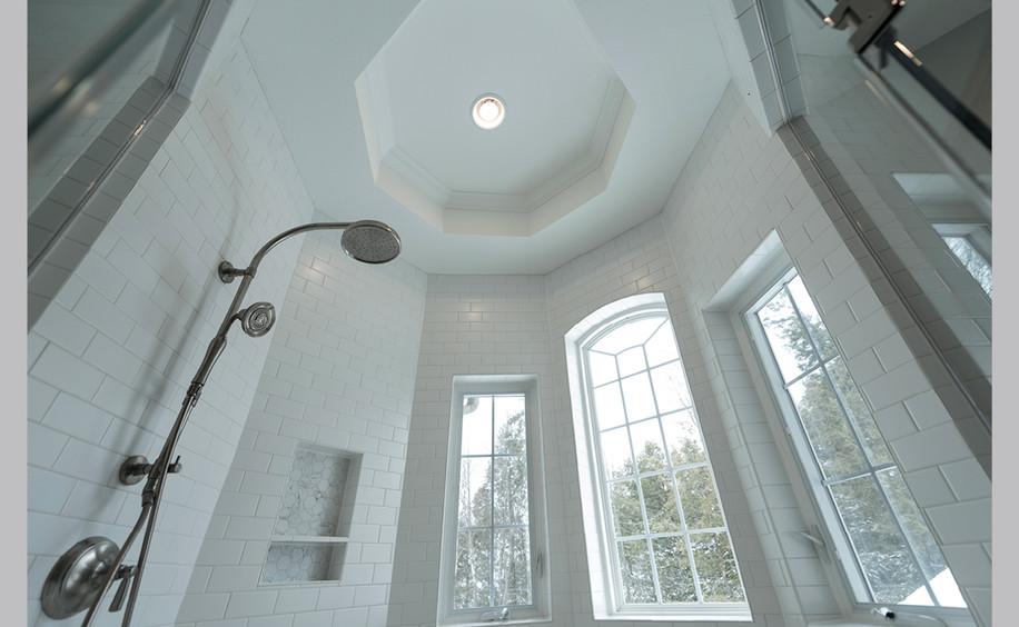 Bathroom Remodel  |  Shower Detail