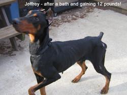 Jeffrey8