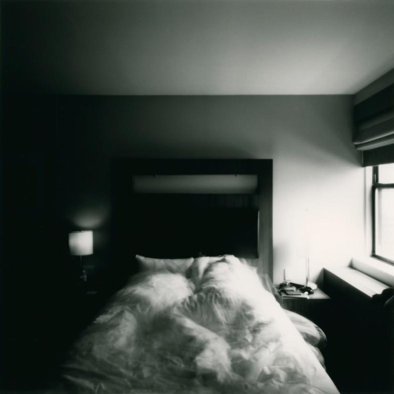 Midwinter Sleep in the Big Apple