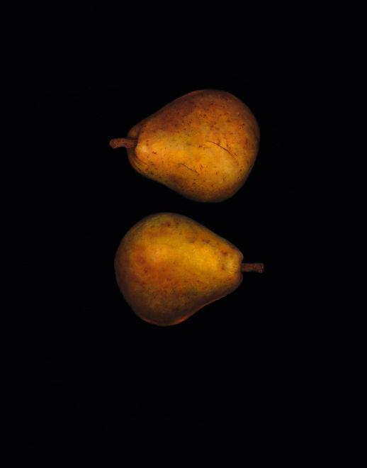 Pear Pear 300 dpicopy.jpg